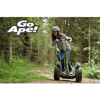 Forest Segway Experience For One At Go Ape Picture