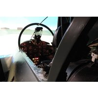 30 Minute Fighter Pilot Flight Simulator Experience Picture
