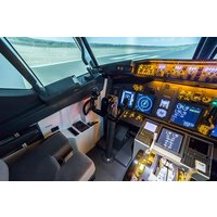 90 Minute Boeing 737-800 Flight Simulator Experience Picture