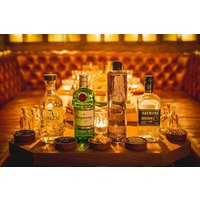 Gin Tasting For Two In Shoreditch Picture