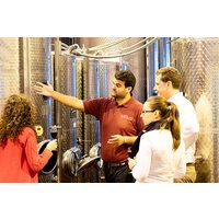 Vineyard Tour, Wine Tasting and Lunch for Two at Bolney Wine Estate - Buyagift Gifts