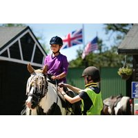 New Forest Horse Riding Experience For Two Picture
