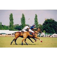 Discover Polo Experience at Westcroft Park - Polo Gifts