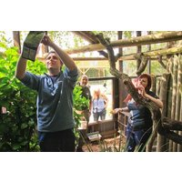 Shadow A Zookeeper Experience For Two At Paradise Wildlife Park Picture