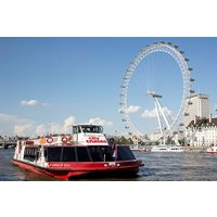 Family Thames Sightseeing Cruise with 24 Hour Rover Pass - Thames Gifts