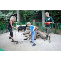 Zookeeper Experience At Paradise Wildlife Park For One Adult And One Child Picture
