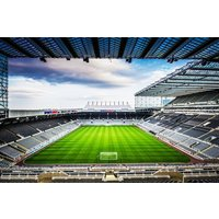 Premier Stadium Tour And Lunch Experience For Two At Newcastle Utd Fc Picture
