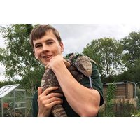 30 Minute Reptile Handling Experience For Two At Viaduct Sanctuary Picture