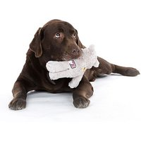 Pet Photoshoot at Jigsaw Photography - Photography Gifts