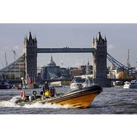 Thames Rib Ride (adult) Picture