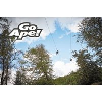 Zip Trekking Adventure For Two At Go Ape Picture