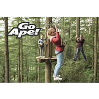 Tree Top Adventure in London for One Child