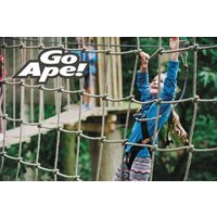 Junior Tree Top Adventure in London for One Child
