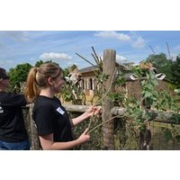 Keeper For A Day At Zsl London Zoo Picture