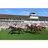 Winning Raceday Package For One