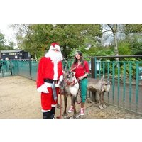 Adopt a Reindeer including Tickets to Paradise Wildlife Park - Animals Gifts