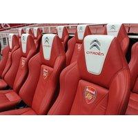 Adult Emirates Stadium Tour