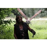2 For 1 Woodland Walk And Owl Flying Experience At Lee Valley Park Picture