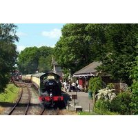 Family Steam Railway Day Rover Ticket in Somerset