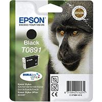 Epson T0891 Black Low Capacity Ink Cartridge (Original)