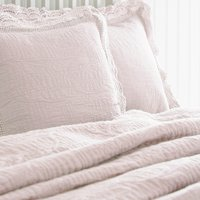 Lace Edge Blush Pillow Sham Blush (Pink)