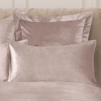 Dorma Camberly Blush Housewife Pillowcase Pair Blush (Pink)