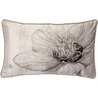 Harris & Hatherly by Jane Abbott Hellebore Natural Cushion Natural
