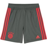 Bayern Munich Training Short - Dark Green - Kids