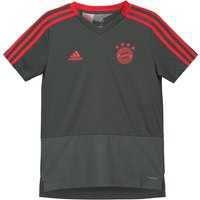Bayern Munich Training Jersey - Dark Green - Kids