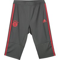 Bayern Munich Training 3/4 Pant - Dark Green