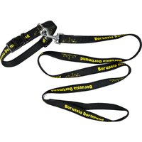 BVB Collar and Lead - Small