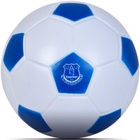 Everton 4inch Mini Football