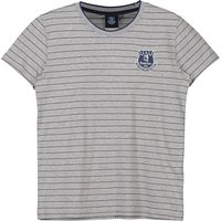 Everton Core Fine Stripe With Tipped Collar T-Shirt- Grey-Junior Boys