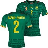 Cameroon Home Shirt 2013/14 with Assou-Ekotto 2 printing