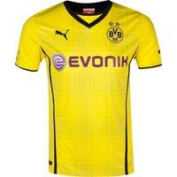 BVB Home Shirt 2013/14
