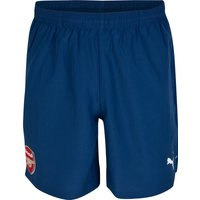 Arsenal Training Shorts