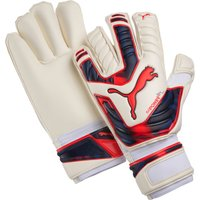 Puma evoPOWER Grip 2 GC Goalkeeper Gloves White