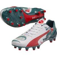 Puma Evospeed 1.3 Graphic Firm Ground Football Boots White