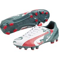 Puma evoSPEED 4.3 Graphic Firm Ground Football Boots - Kids White