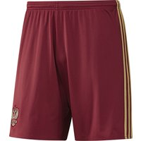 Russia Home Shorts 2016 Red