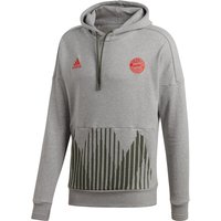 Bayern Munich Hoody - Grey