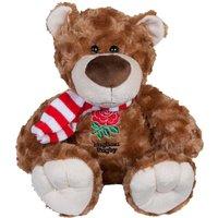 England Big Paw Bear