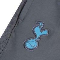 Купить Мужские футбольные брюки Nike Dri-FIT Tottenham Hotspur Strike