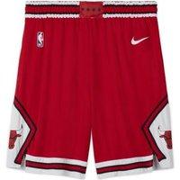 Мужские шорты Nike НБА Chicago Bulls Icon
