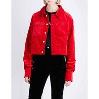 Pointed collar velvet jacket