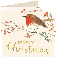 Robin on branch Christmas cards pack of six