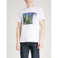 Palm tree-print cotton-jersey T-shirt