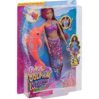 Dolphin magic playset
