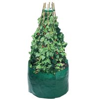 Product photograph showing Bean And Pea Grow Bag