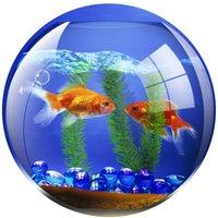 Brite Pad - Fish Bowl